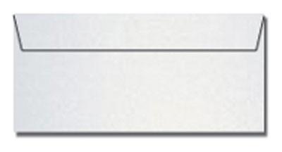 Ice Silver #10 Envelopes