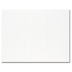 White Trifold Brochure 100pk.